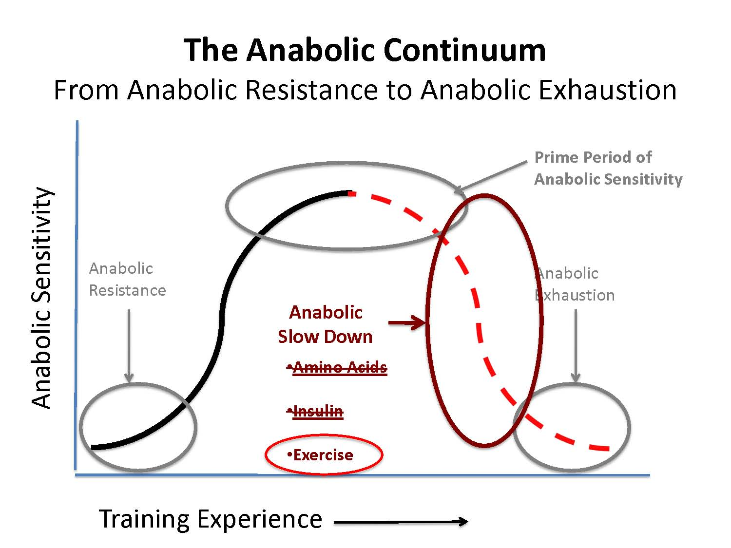 Anabolic Continuum – Where Are You?