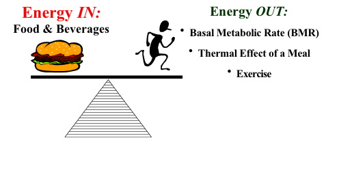 How Many Calories Do You Burn In a Day?